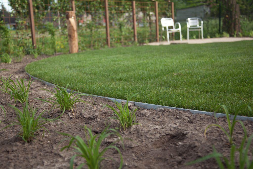 Beplanting en gazon